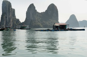 siteG_halongbay_barco_casafamilia